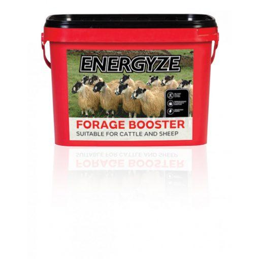 Harbro Energyze Forage Booster nyalótömb kérődzők részére - gyenge takarmányok és kisült legelő mellé